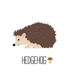 Cute hedgehog isolated vector