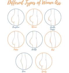 Different types women ass vector