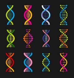 Dna helix symbols genetic medicine signs vector