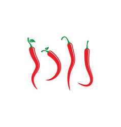 Hot chili icon vector