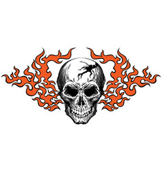 Skull in tongues flame vector