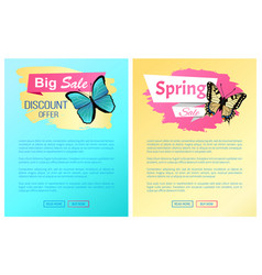 spring sale label butterflies online posters text vector image