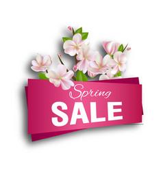 spring sale season discount banner design vector image