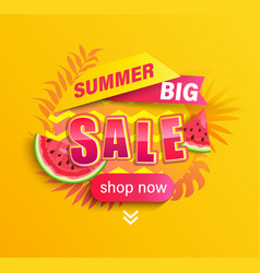 summer big sale promotion on yellow background vector image