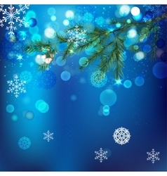 Snow branches vector image vector image