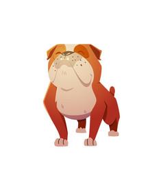 english bulldog dog character vector image