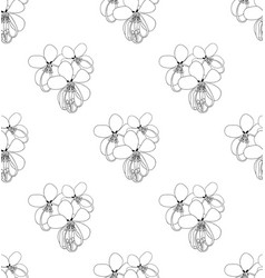 cassia fistula - gloden shower flower on white vector image vector image