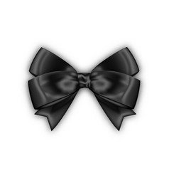 beautiful realistic black bow for your design vector image