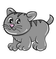 cute little cat on white background vector image