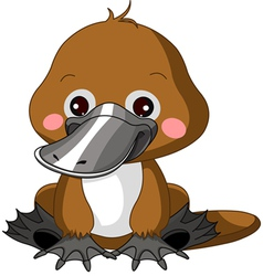 Fun zoo Platypus vector