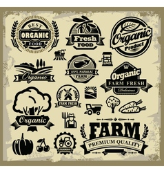 organic harvest labels vector image