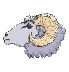 ram farm animal vector image