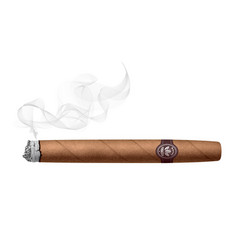 Realistic smoking cigar isolated on white vector