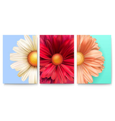 set spring covers with bud flowers close-up vector image