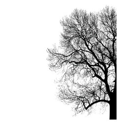 Silhouette of tree for your vector