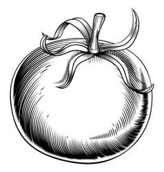 Vintage retro woodcut tomato vector