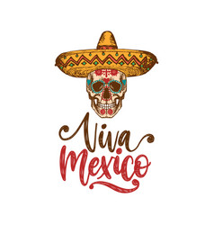 viva mexico hand lettering calligraphy vector image