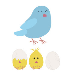 mother bird and chicken hatching vector image