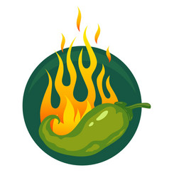 hot jalapeno or chili peppers vector image