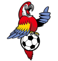 red macaw bird stand over the soccer ball vector image vector image
