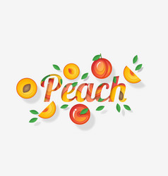 word peach design decorated with peach fruits vector image