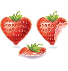 nibbled strawberry vector image vector image