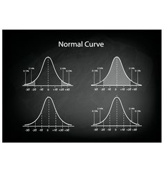 Collection of normal distribution diagram vector