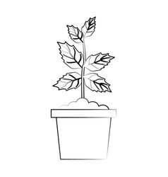 leaves eco symbol vector image