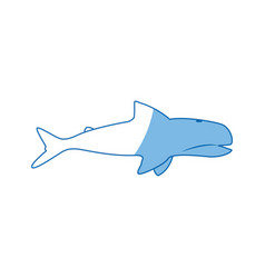 Whale wildlife water animal silhouette vector
