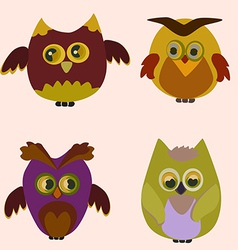 little owl vector image