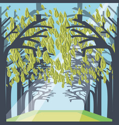 pathway through a dense forest landscape vector image vector image