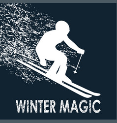 skier -winter magic vector image