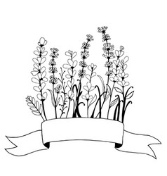 Hand drawn banner frame with flowers lavender vector
