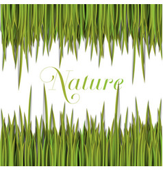 Natural green template with grass vector