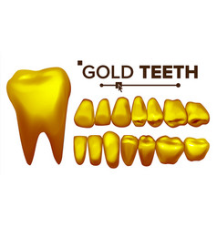 golden tooth metal gold human teeth vector image vector image