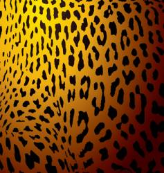 leopard skin gold vector image vector image