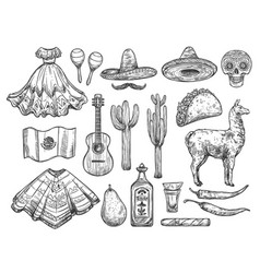 cinco de mayo isolated mexican holiday symbols vector image