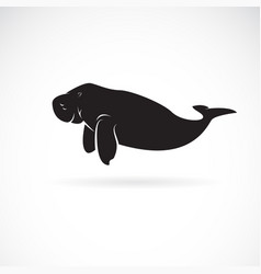 dugong design on white background wild animals vector image