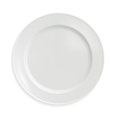 empty porcelain plate in a realistic style vector image