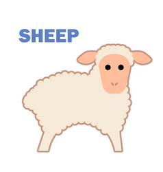 farm animal sheep isolated vector image