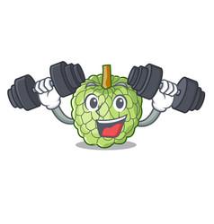 fitness sugar apple fruit isolated on cartoon vector image
