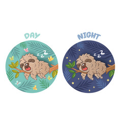 sloth sleeps day and night vector image