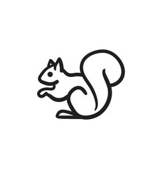 Squirrel sketch icon vector