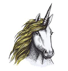 sketch unicorn horse mystic magic animal vector image vector image