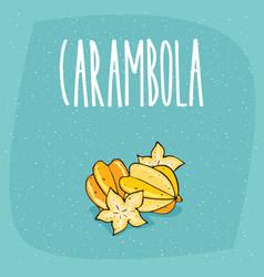 isolated ripe starfruit fruits or carambola vector image