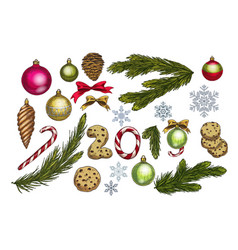 christmas and new year decoration set with pine vector image