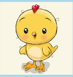 Cute chicken isolated on a white background vector