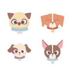 cute faces dog different pedigree domestic cartoon vector image