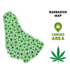 Marijuana mosaic barbados map vector