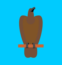 hawk isolated golden eagle on blue background big vector image vector image